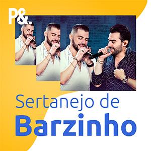 Playlist Sertanejo de Barzinho 2020